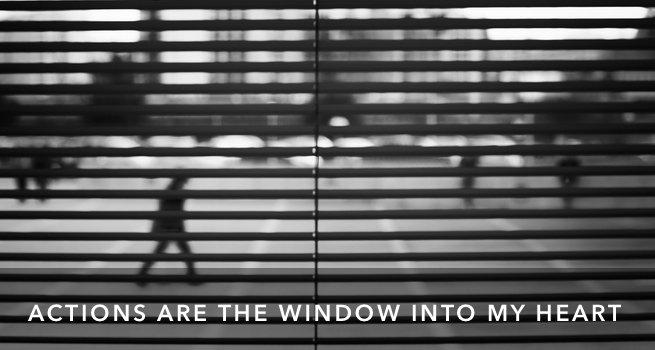 FI Window Into Heart