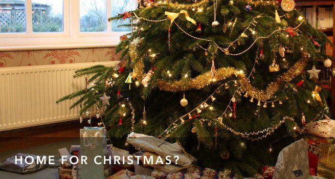 FI Christmas Promise