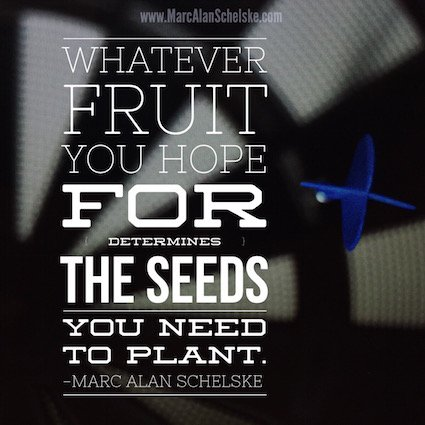 Quote - Choose Seeds small