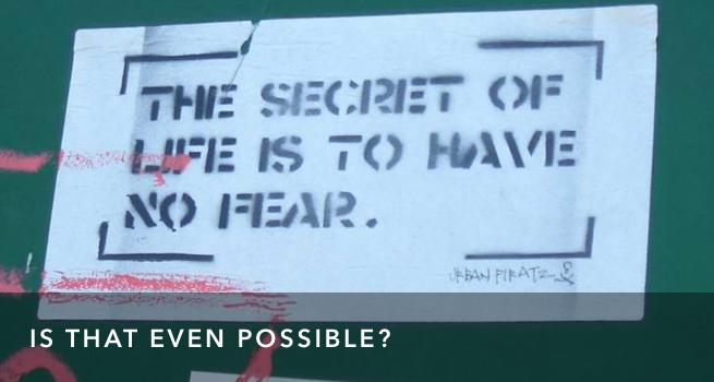 FI No Fear