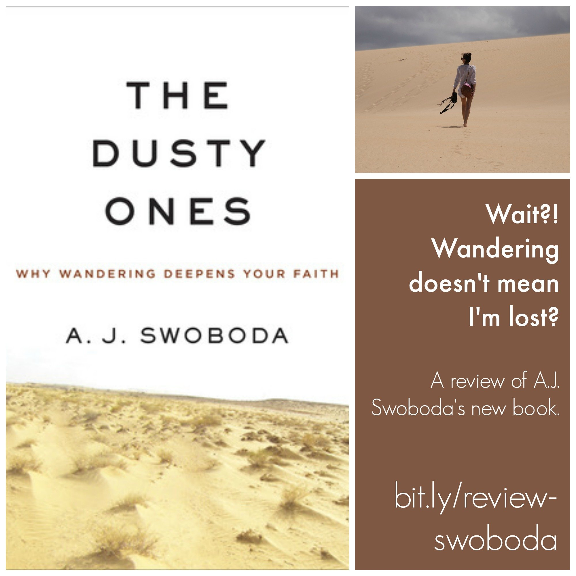 Pin - Swoboda Dusty Ones